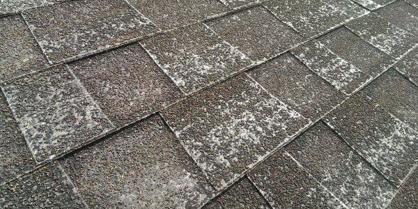 What Does Granule Loss Mean to Your Roofing System
